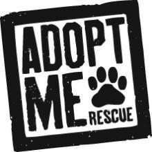 adoptmerescue-logo-adi_222w_2